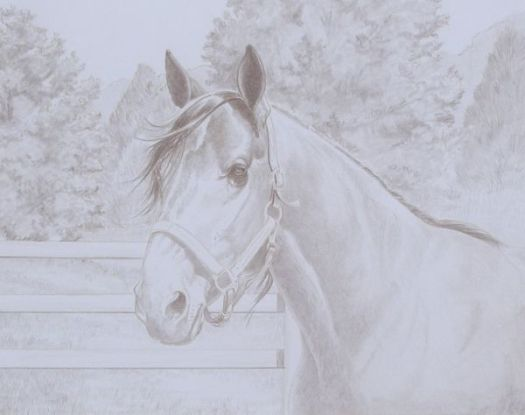Explore drawing methods with the online colored pencil course.