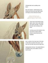 Classy Chestnut Horse Tutorial Drawing Long Hair