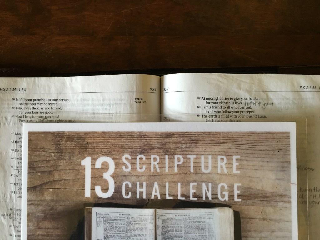 13 Scripture Challenge.3