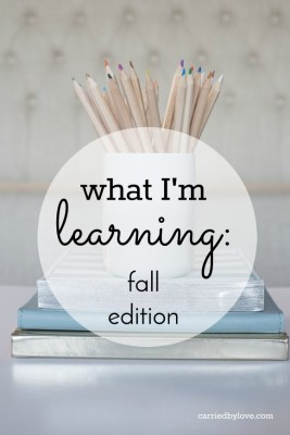 What I'm Learning: Fall Edition