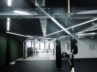 gym 41