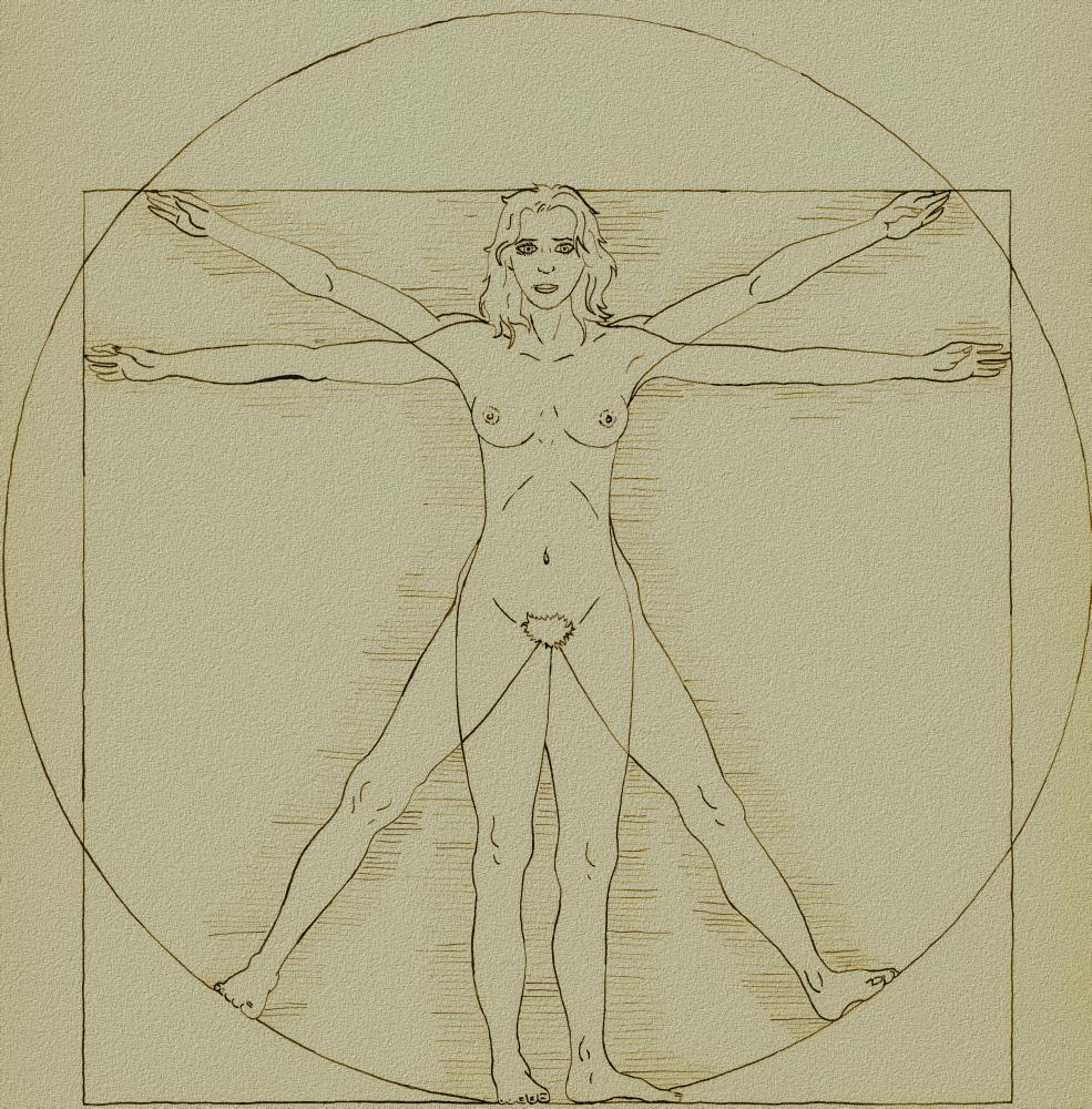 Una guida per asessuali a … Anatomia femminile.