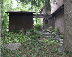 Garden Oasis Carroll Landscaping, Inc.