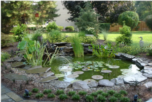 Ponds and Water Features Carroll Landscaping