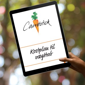 carrotstick-kostplan-ipad
