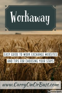 guide to work away program and tips for host choice