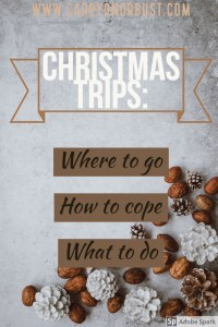 where to go and how to cope with christmas travel
