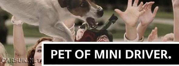 Are you a 'Cool' MINI Driver?