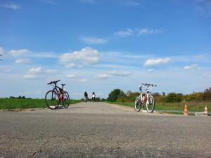 Una visuale della nuova pista ciclabile dell'Amola