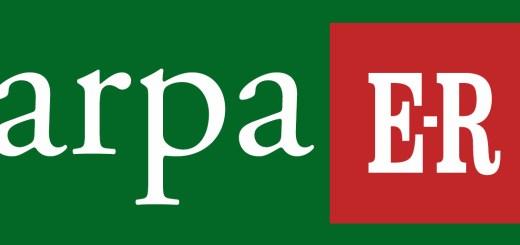 logo_arpaER