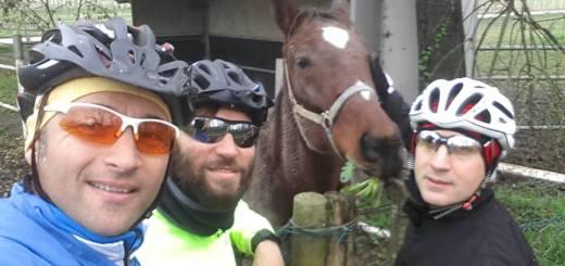 giro dei cavalli