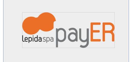 lepida_payer