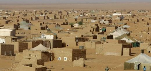 il-popolo-saharawi-orig_main