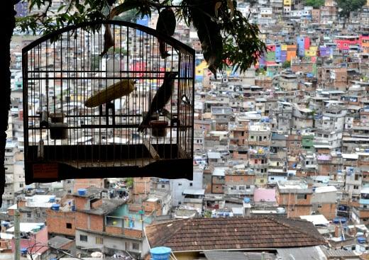 O encarecimento do custo de vida obriga famílias pobres a migrar para bairros cada vez mais distantes. Foto: Christophe Simon/AFP