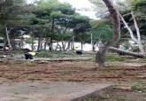 Daños causados por la borrasca en el litoral