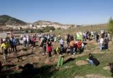 Reforestación en Alumbres (imagen de archivo)