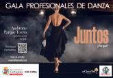 Gala profesionales de la danza