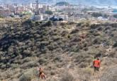 Reforestación en el entorno de La Atalaya