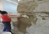 Trabajos de restauración en la Muralla Púnica