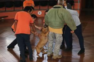 Se ofrecieron charlas a estudiantes sobre el trato de los perros. Fotos: Municipalidad de Cartago.