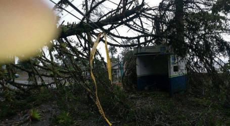 En estos lugares JASEC presentó más incovenientes por los fuertes vientos