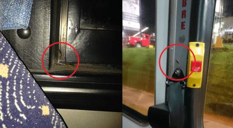 Usuarios denuncian cucarachas en bus de Lumaca