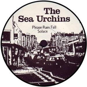 the-sea-urchins-please-rain-fall-sarah