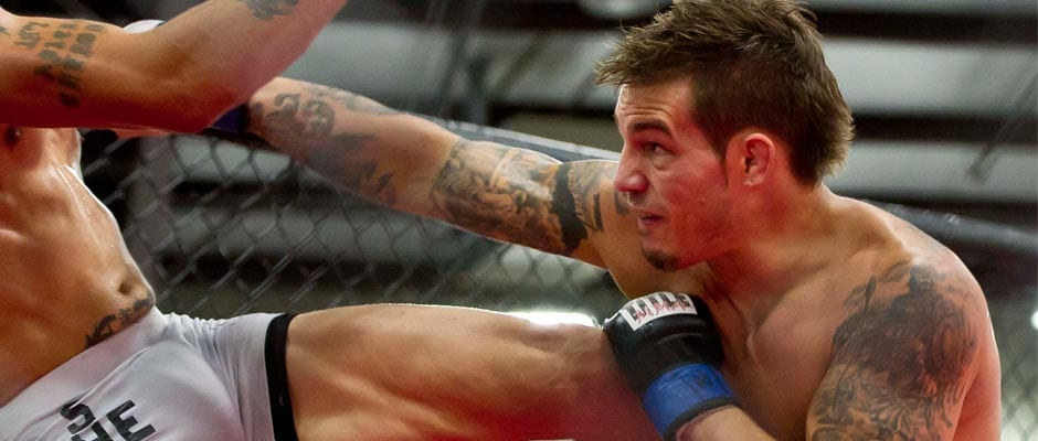 Push is on to keep MMA, boxing in TN