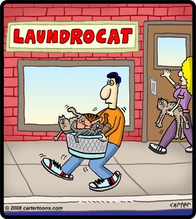 laundrocat