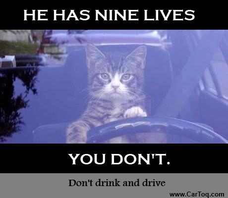 drunken driving in india