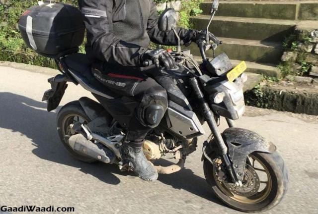 Honda MSX125 Spyshot 2