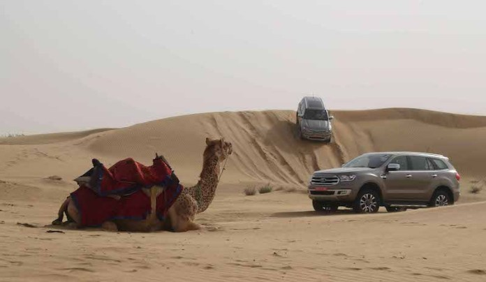 13new 2019 Ford Endeavour