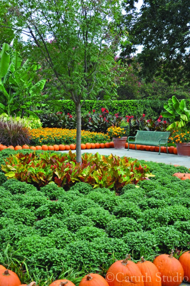 Autumnal flower beds and path in gold, green, yellow and red, with pumpkin accents