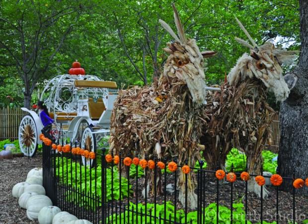Cinderella pumpkin coach pulled by cornstalk horses