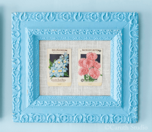 Framed seed packets