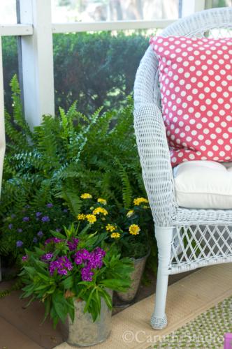 Lush plants on porch