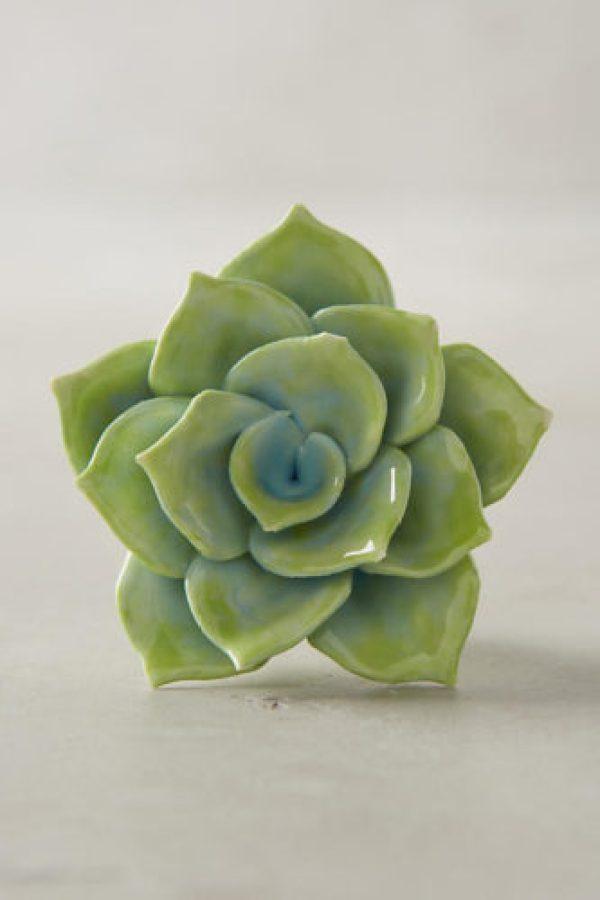 FloraCulture Knob