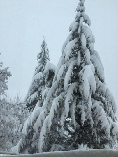 Montese nevicata 5 febbraio 2015