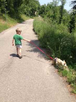 A Taddeo piace andare a passeggio con Luce
