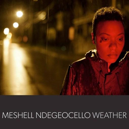 Meshell Ndegeocello - Weather