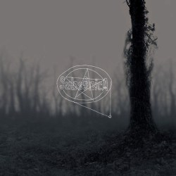 Subsonica - Controllo Del Livello Di Rombo