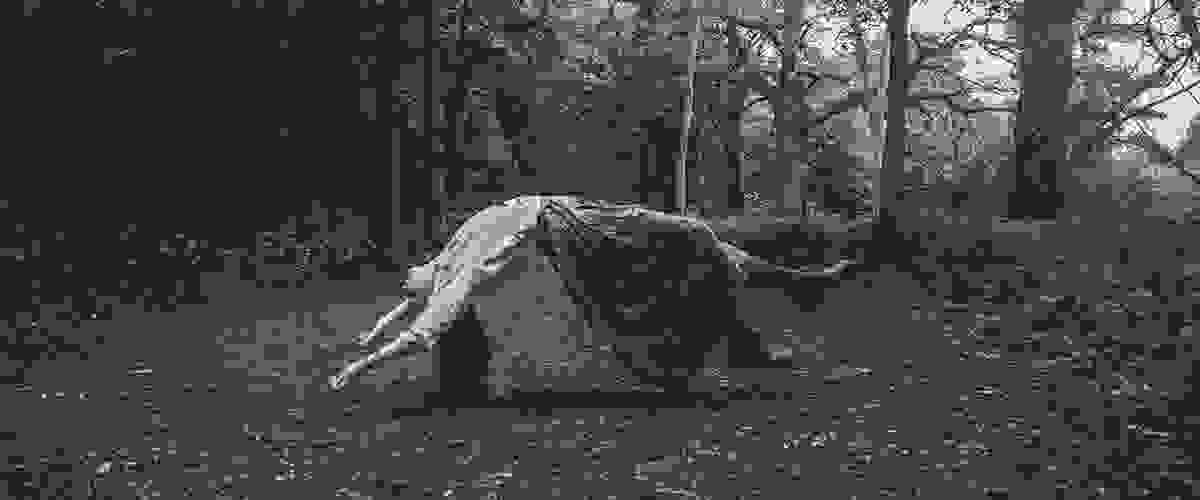 Levitating woman in woods