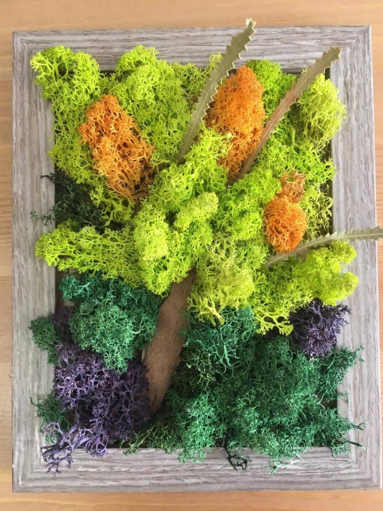 cum se face tabloul cu licheni
