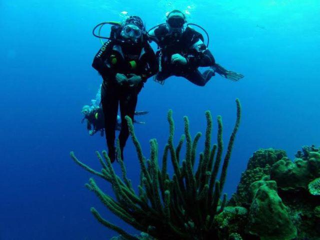 mergulho adaptado- tetraplegica - casadaptada