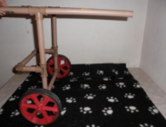 cadeira de rodas para caes 7