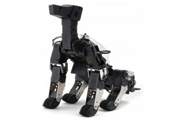 cao-guia-robo2