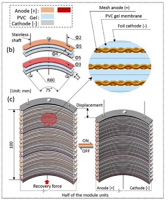Exoesqueleto acionado por músculo artificial biomimético