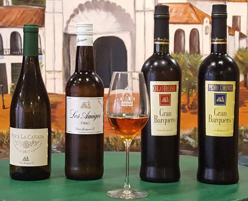 Cata de vino 11-11-2018