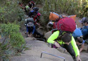 pico-parana-trekking (26)
