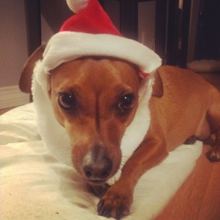 Christmas – 2014
